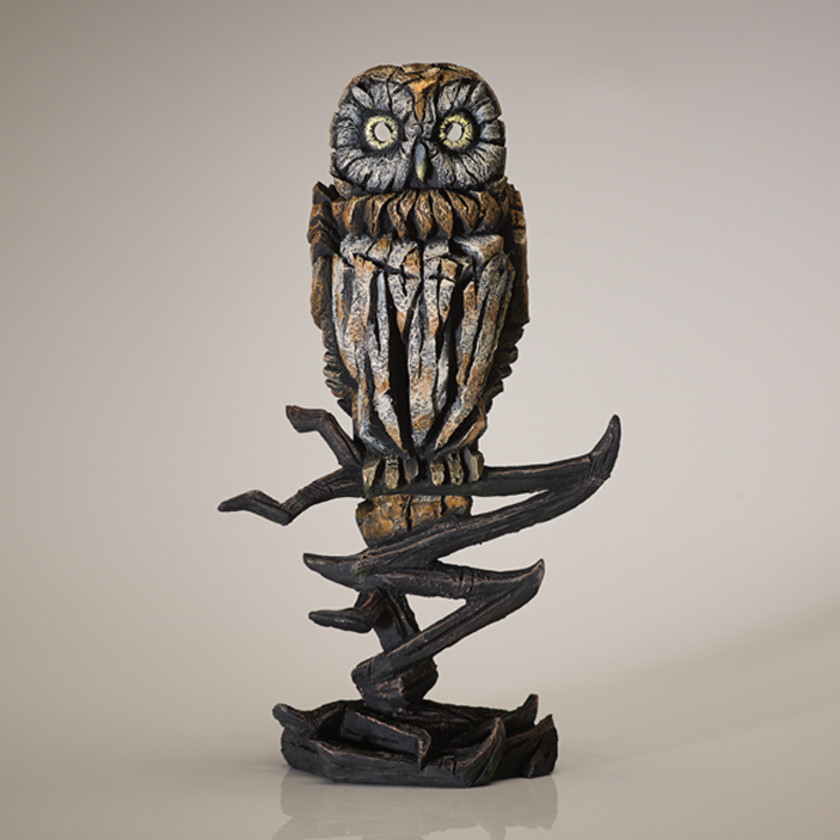 Owl - Tawny