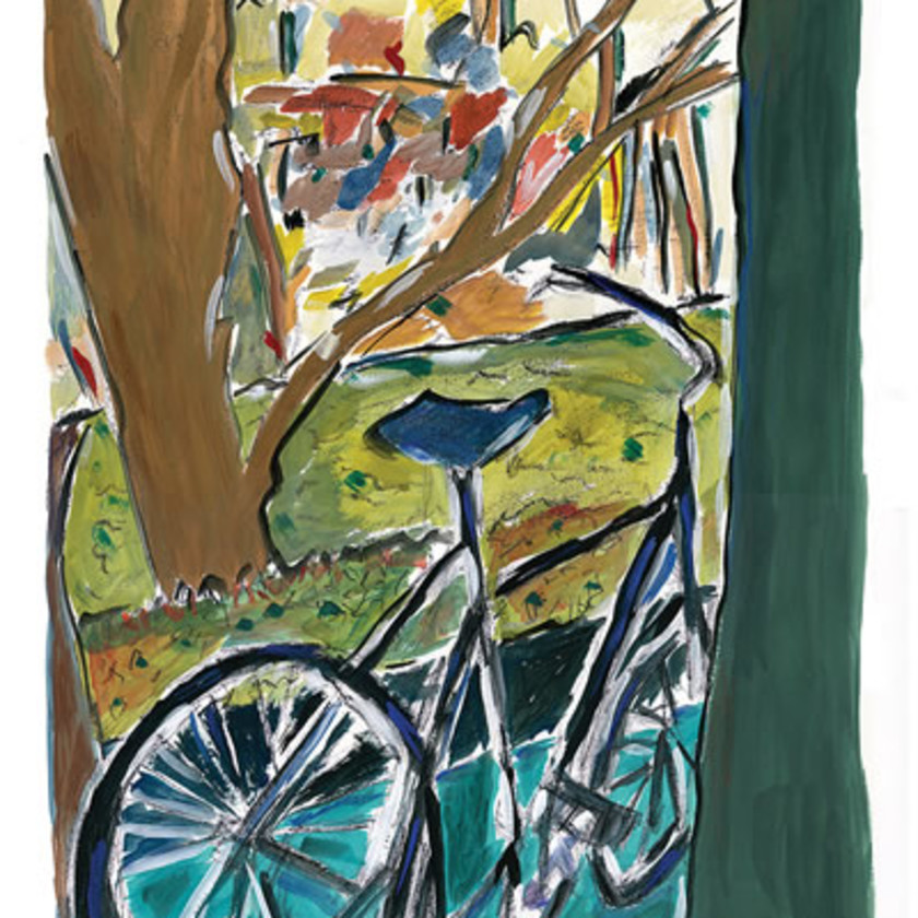 Bicycle, 2014