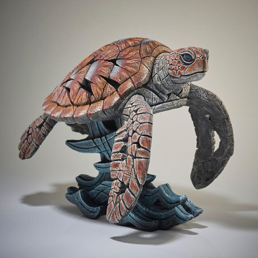 Sea Turtle, 2019