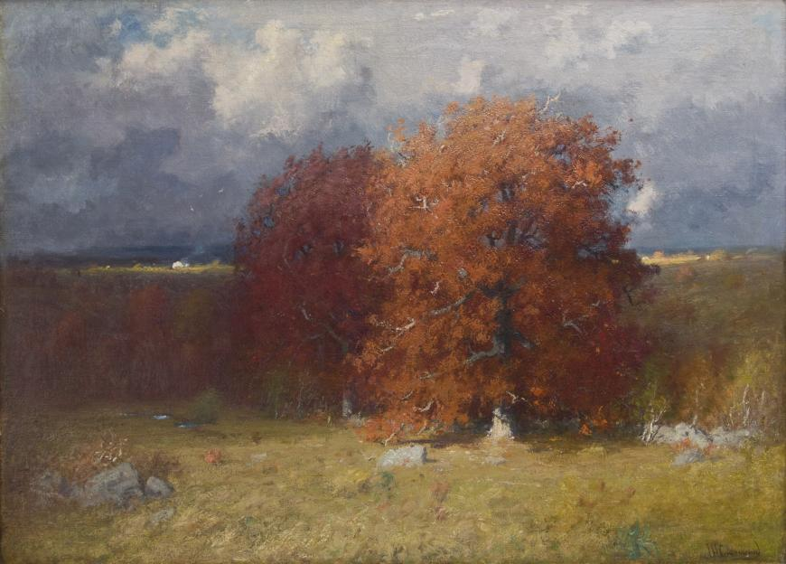 Ancient Oaks