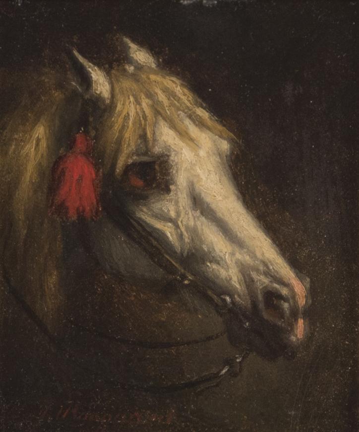 Willem Jacobus Boogard, Tête de Cheval