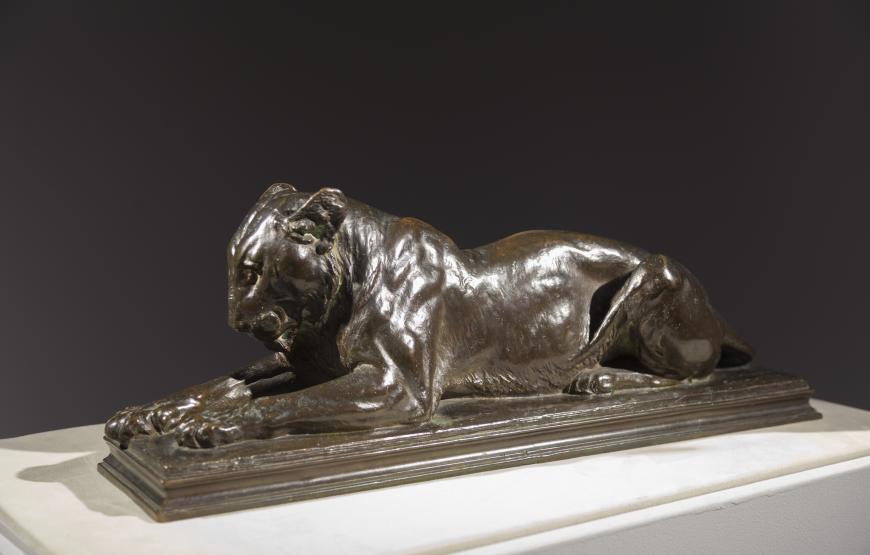 Recumbent Lioness