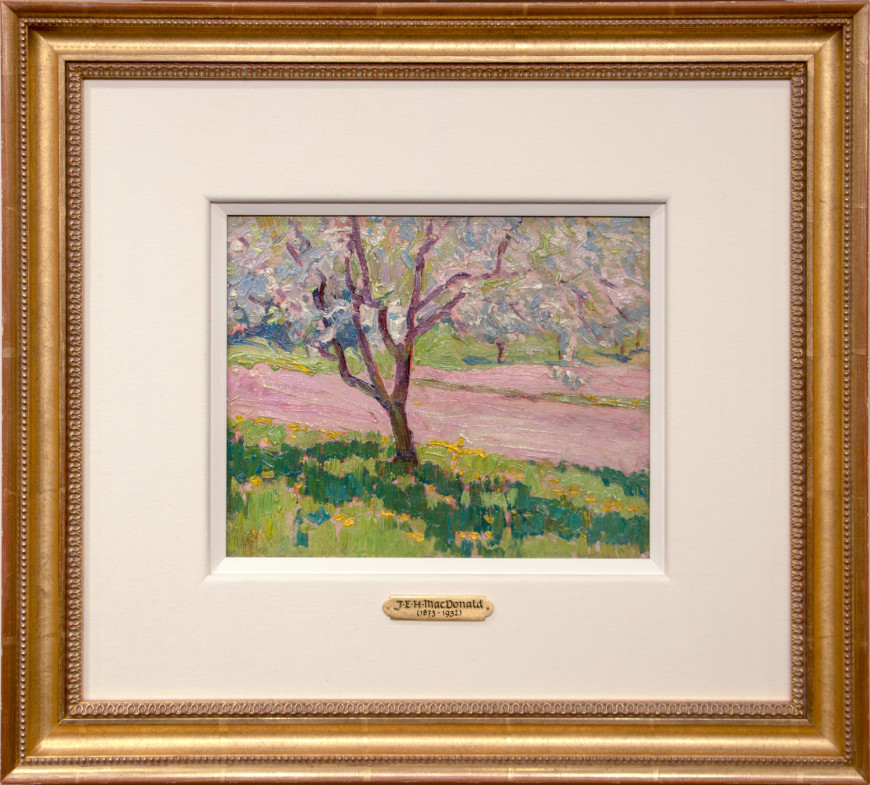 Apple Blossom, York Mills