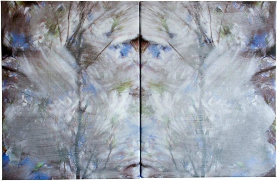 Blossom - blurred