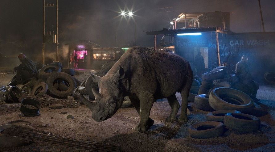 <span class=&#34;artist&#34;><strong>Nick Brandt</strong></span>, <span class=&#34;title&#34;><em>Garage with Blind Rhino </em>, 2018</span>