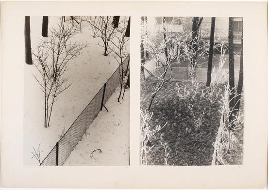 <strong>Josef Albers</strong>, <em>Vor meinem Fenster, 1931, 1932 / In front of my window, 1931, 1932 (JAAF 1976.7.65)</em>, 1931-32