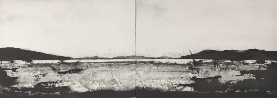 Hunter River, North Channel (diptych)