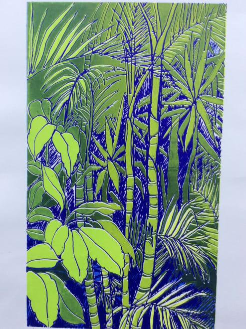 Rainforest: Morning