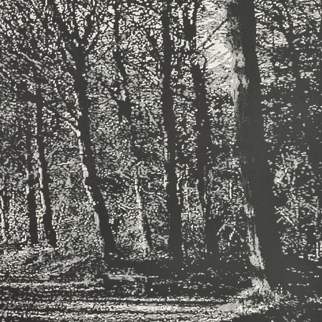 Woodland IX