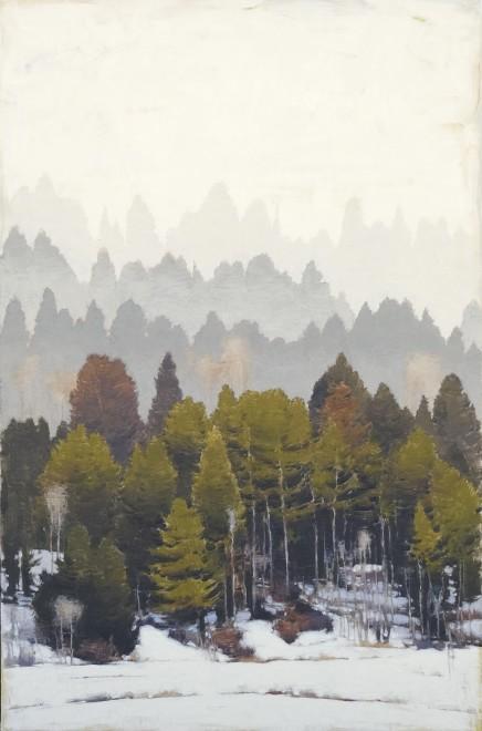 Jared Sanders, Forest
