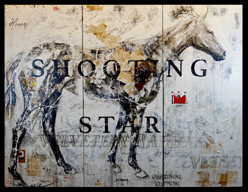 Ashley Collins, Shooting Star