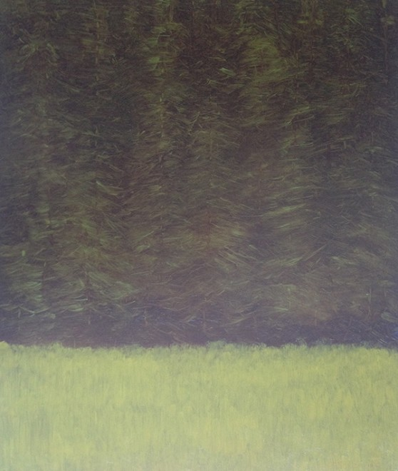 Conifers #2