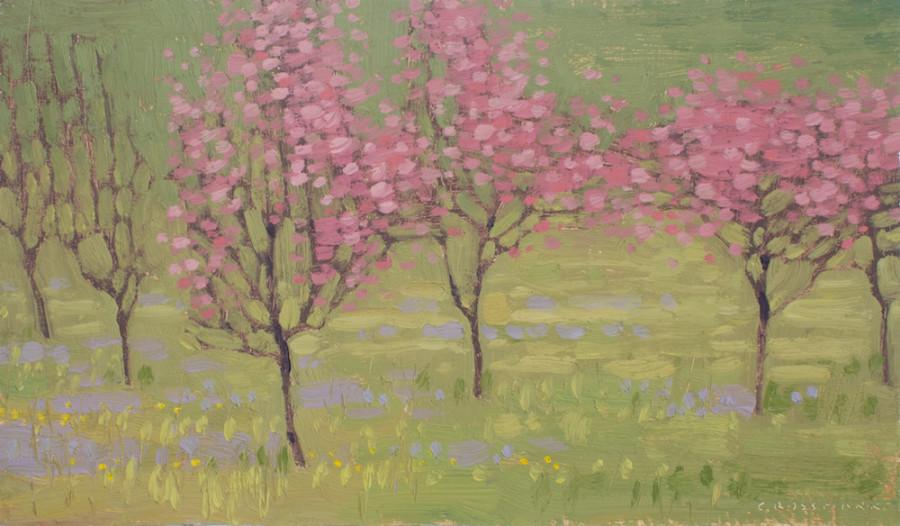 David Grossmann, Pink Spring Flowers