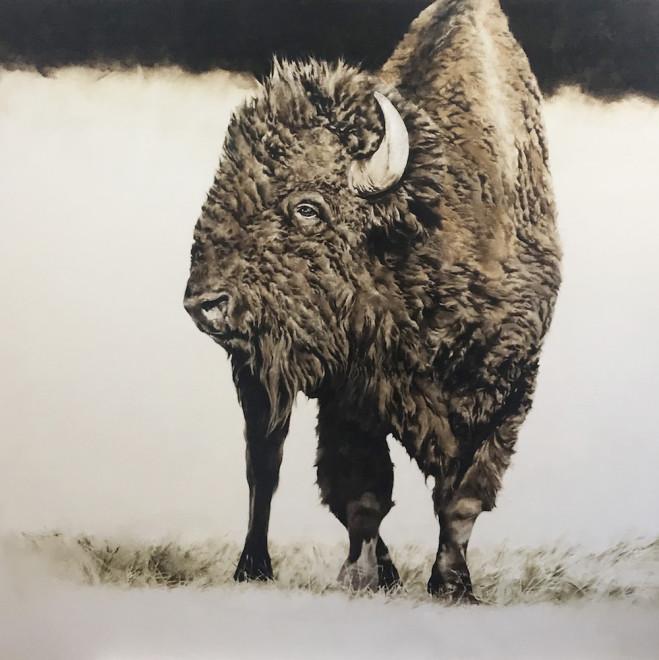 September Vhay, Yellowstone's Llamar