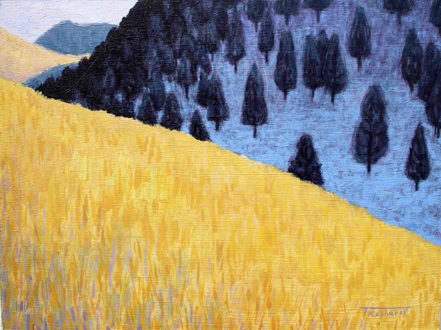 Todd Kosharek, Shadow Snow
