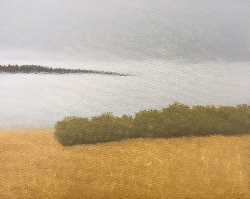 Dave Hall, Willows