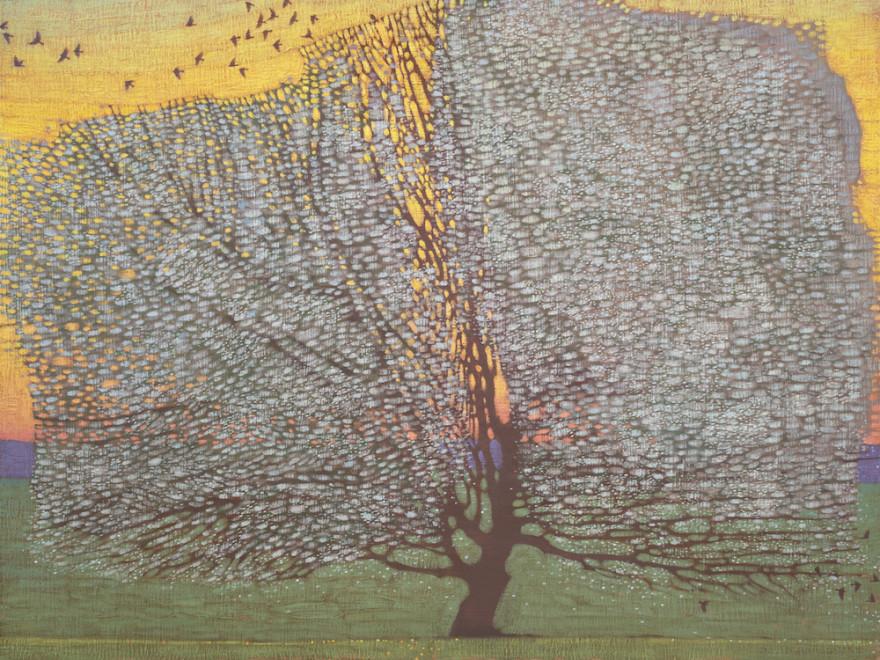 David Grossmann, Spring Apple Tree