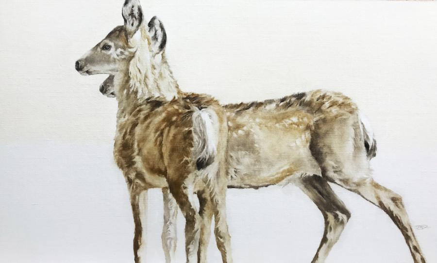 September Vhay, Deer Run Sienna