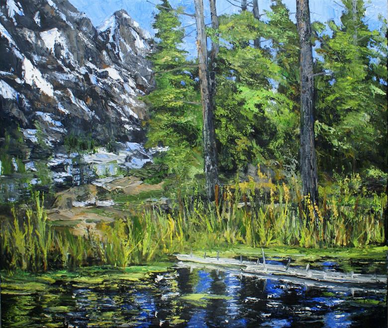 James Pringle Cook, Upper Pool - Teton #1