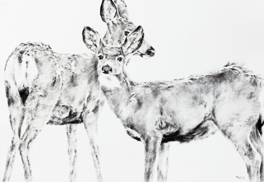 September Vhay, Deer Run Radiance Two