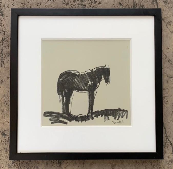 Camas Prairie Horses Dr. #7