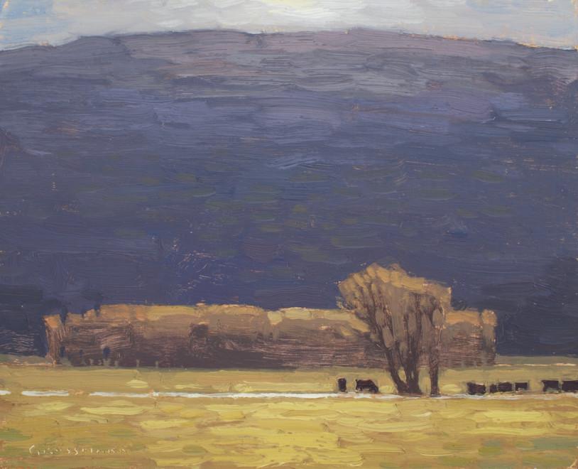 David Grossmann, Sunlit Mountain Pasture