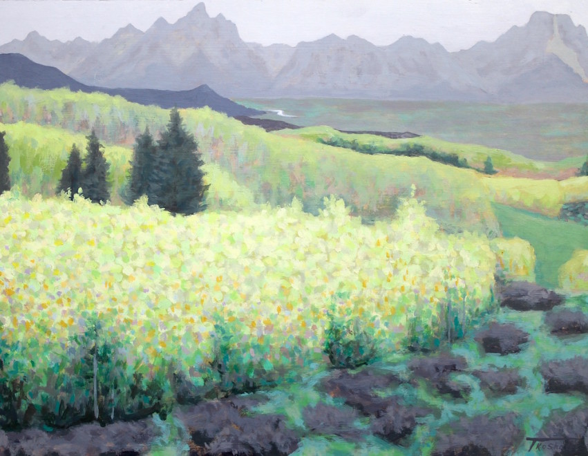 Todd Kosharek, This Valley