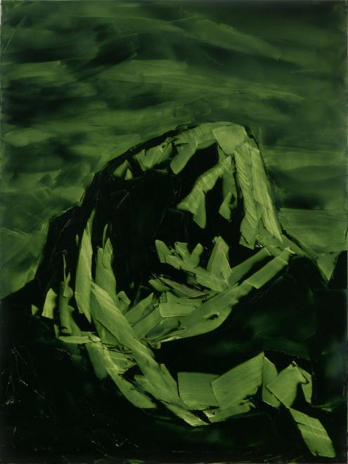 Jivan Lee, Grand Teton, ROYGBIV #3, Green (sap green)