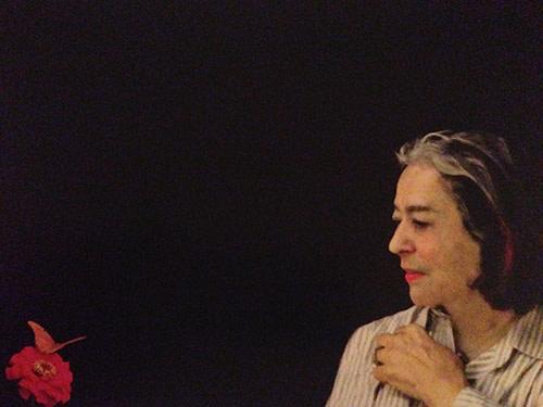 Joan Quinn y la Mariposa