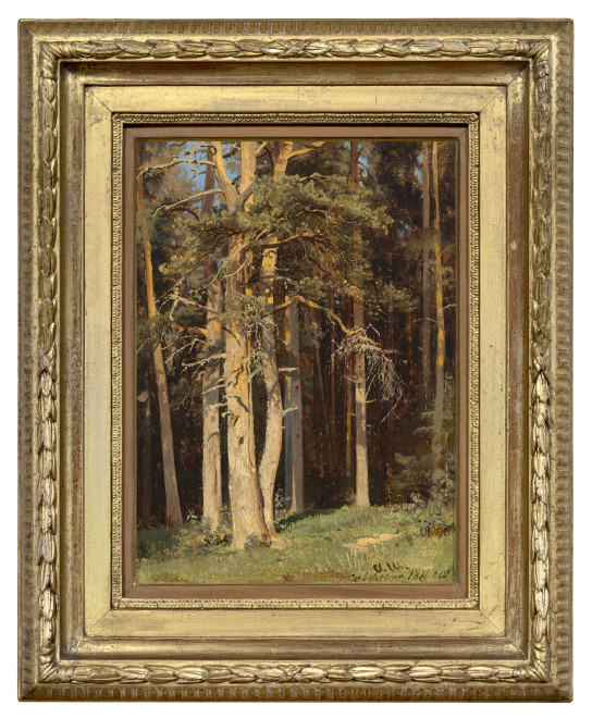 SIVERSKAYA (EDGE OF A FOREST)