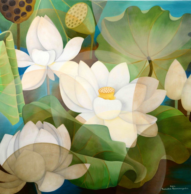 Senaka Senanayake, White Lotus, 2014