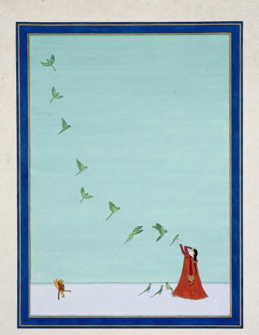 Elisabeth Deane, پارکیٹس (Parakeets of Pakistan), 2019