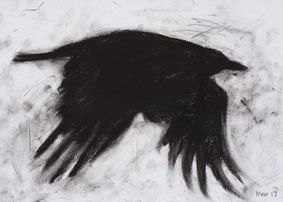 Jim Moir, Crow I, 2017