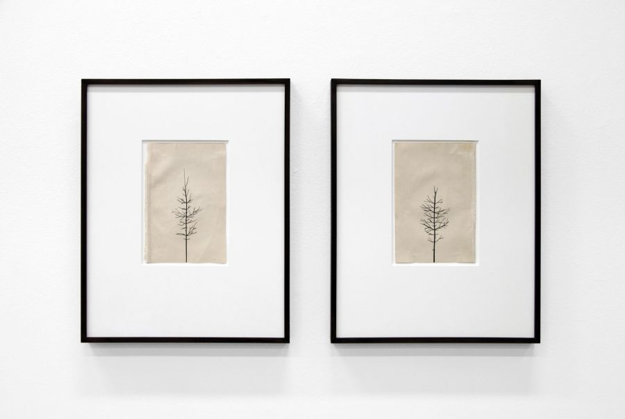 PETER LIVERSIDGE, Winter Drawing (Summer Version), 12 vs. 13 Winter Drawing (Summer Version), 13 vs. 13, 2011