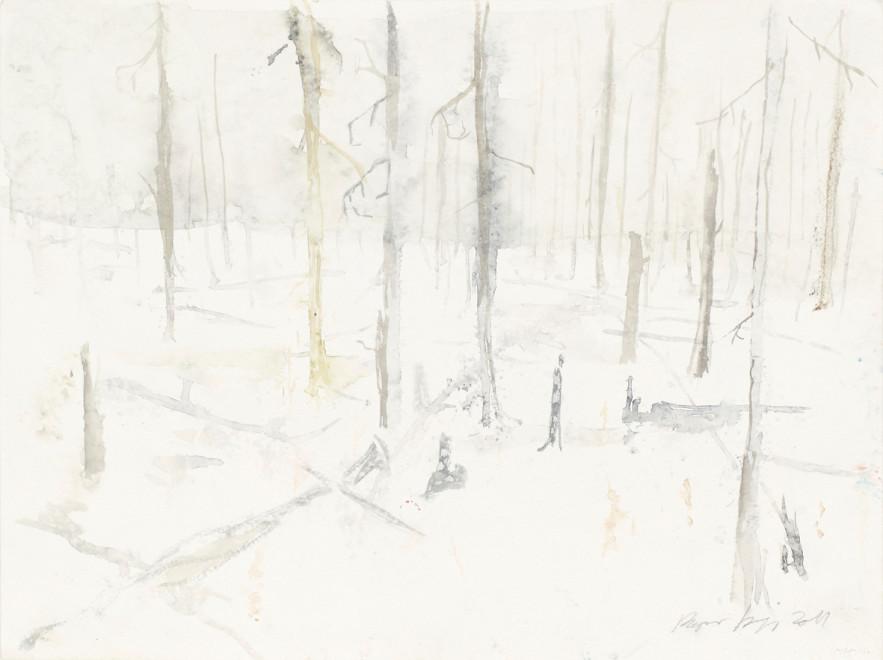 RAGNAR KJARTANSSON, Af lendum heimshryggðarinnar í Bresku Kólumbíu / From the Valley of World-Weariness in British Columbia (I), 2011