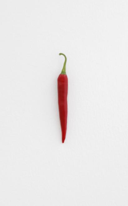 KARIN SANDER, Chili pepper (Kitchen Pieces), 2011 / 2016