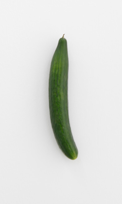 KARIN SANDER, Cucumber (Kitchen Pieces), 2011 / 2014