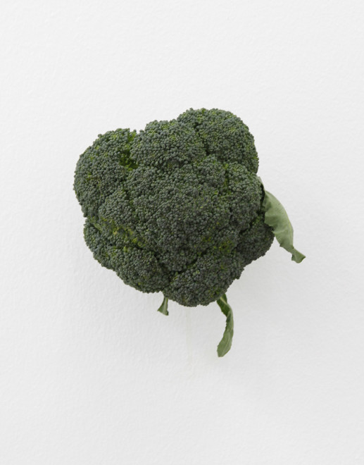 KARIN SANDER, Broccoli (Kitchen Pieces), 2011 / 2016
