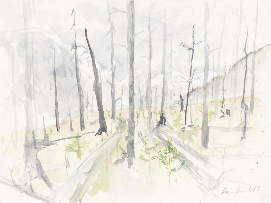RAGNAR KJARTANSSON, Af lendum heimshryggðarinnar í Bresku Kólumbíu / From the Valley of World-Weariness in British Columbia (X), 2011