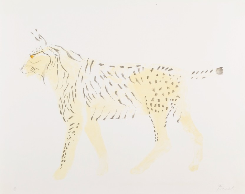Lynx, from Eight Animals