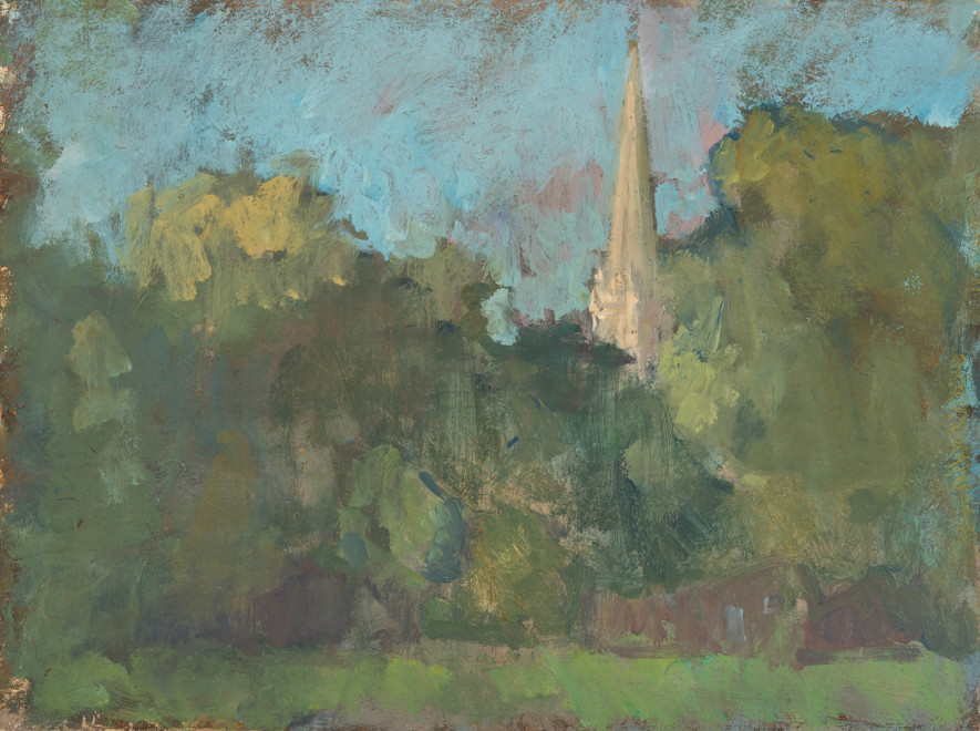 Salisbury Cathedral amongst the Trees