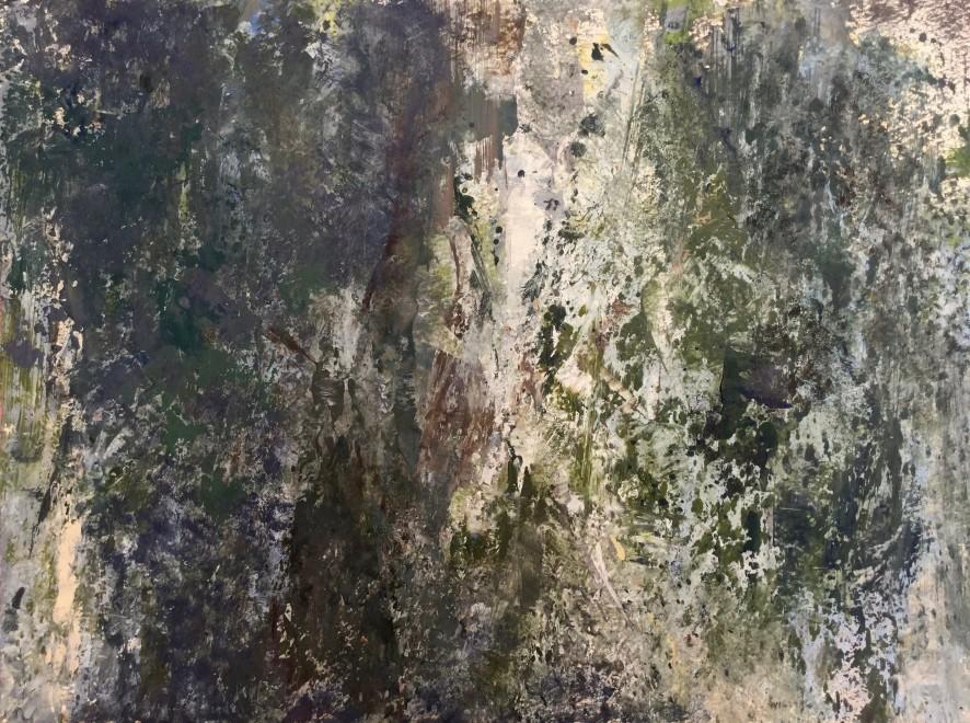 Stony Woodland