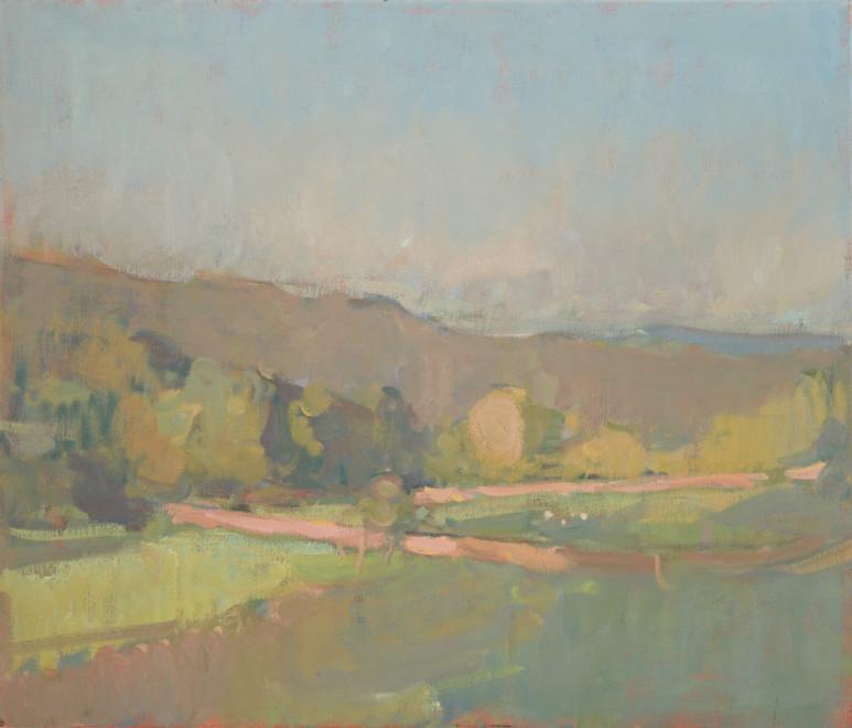 Landscape in Dartmoor