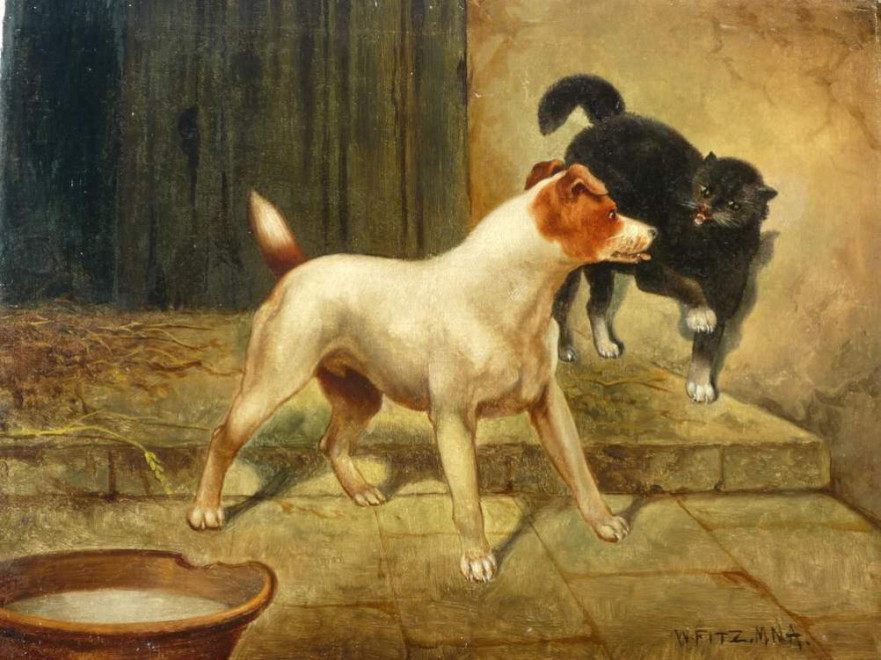 Terrier & Cat