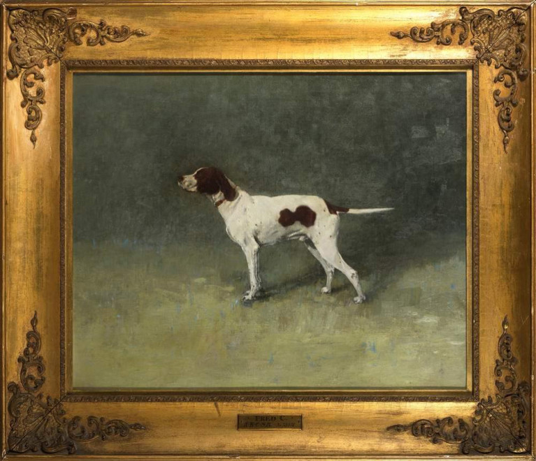 Liver and White Pointer
