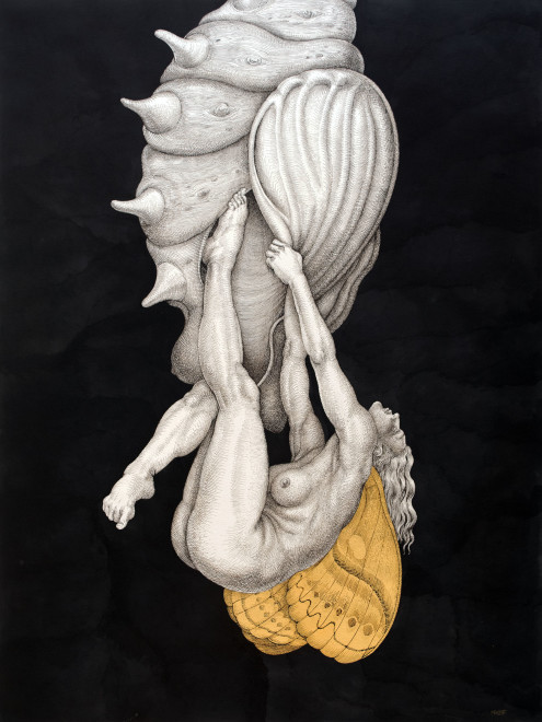 Michael Bergt, Chrysalis V