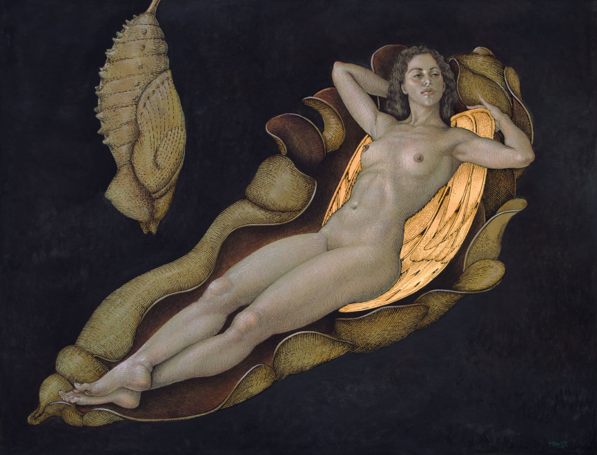 Michael Bergt, Chrysalis II