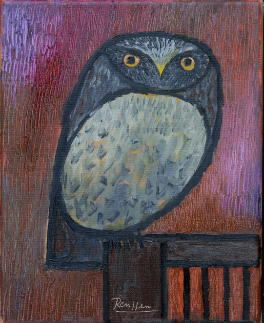 Little owl on a chair