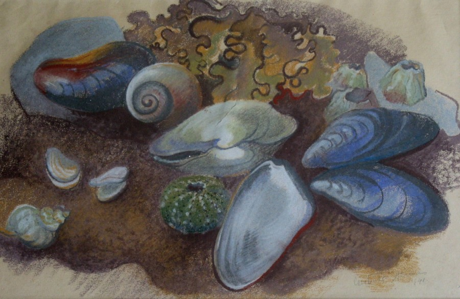 Gertrude Hermes, Still Life with Sea Shells, 1941