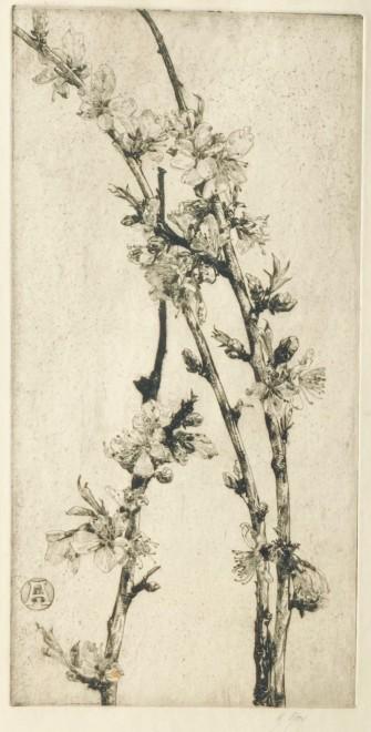Anna Airy, Apple Blossom, 1926